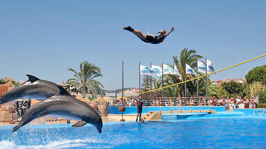 dofins-santa-susanna-can-rosich